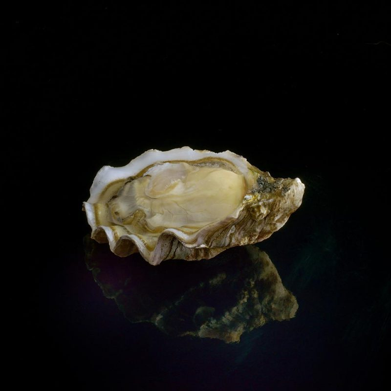 boudeuse david herve oyster hong kong m&c Asia