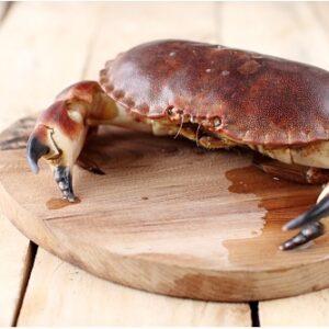 Cooked Brown Crab M&C Asia Hong Kong